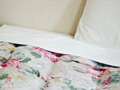 寝具・ふとんを探す(1)の画像